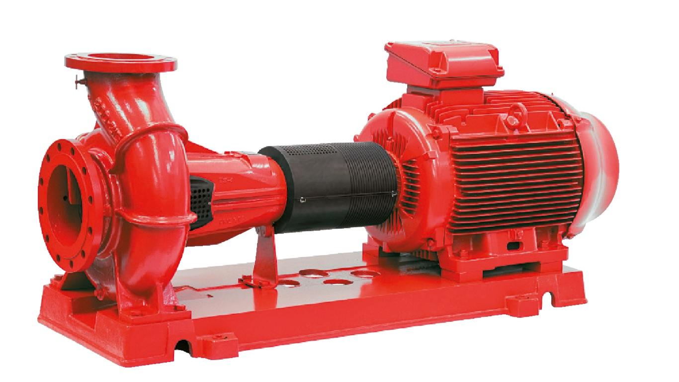 Salmson pump